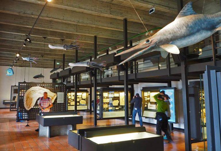 Museum für Urgeschichte