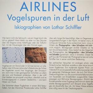 Airlines: Vogelspuren