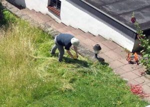 Beim Versuch, die Wiese mit der Heckenschere zu schneiden